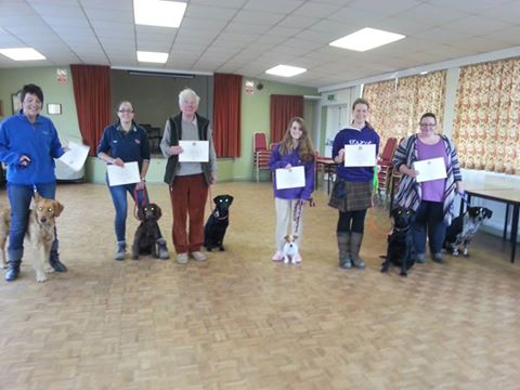 Puppy Improvers Class</br>on Sat 16 December 2017</br>Starts at 11:30