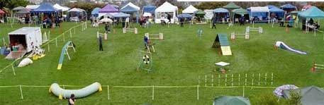 Open Agility Show</br>on Sat 20 June 2020</br>Starts at 08:30